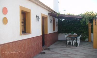 Casa Villazo 1 en Almáchar (Málaga)