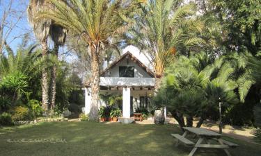 Casa rural Borrajo en Alhaurín el Grande (Málaga)