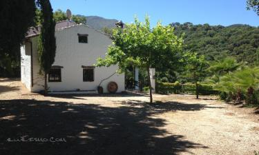 Casa Rural Las Veguetas en Genalguacil a 29Km. de Cancelada