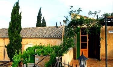 Sa Casa Rotja en Sineu a 30Km. de Alcúdia