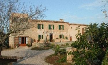 Sos Ferres den Morey en Manacor (Mallorca)