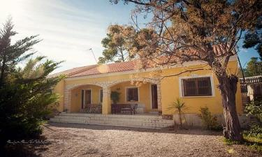 Casa Rural El Valle en Ojós (Murcia)