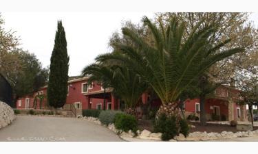 Finca del Olmo Resort en Jumilla a 37Km. de Yecla