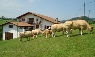Casa rural Alkeberea en Bera/Vera de Bidasoa (Navarra)