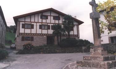 Mikelestonea