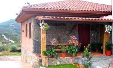 Casa Rural Los Olivos en Sotoserrano (Salamanca)