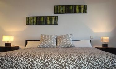 Hotel Casa Rural El Pinsapo de Pedraza