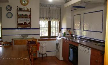 Casa Rural El Fresno del Abuelo en La Cuesta (Segovia)