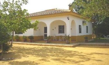 Casa Rural Finca San Rafael en Carmona a 30Km. de Villanueva del Río y Minas