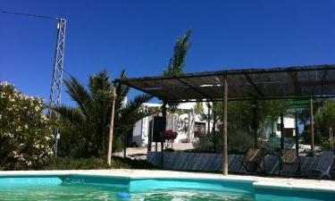 Casa Rural Peñalosa en Pruna a 43Km. de Osuna
