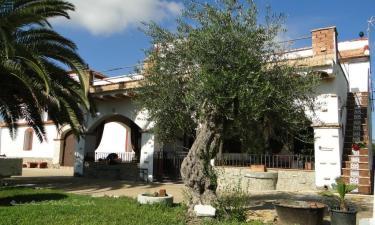 Molino Jardín de Gadeo en La Campana (Sevilla)