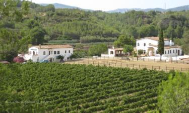 Casa Rural Mas Aragó en Aiguamúrcia (Tarragona)