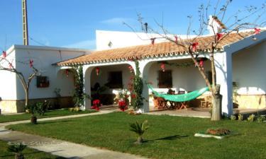 Deltaprego en Deltebre (Tarragona)