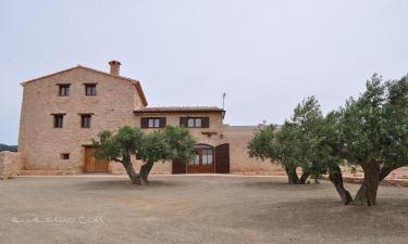 Mas Rossell en El Pla de Santa Maria (Tarragona)