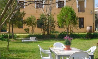 Casa Rural Morera en Ontinyent a 43Km. de Navarrés