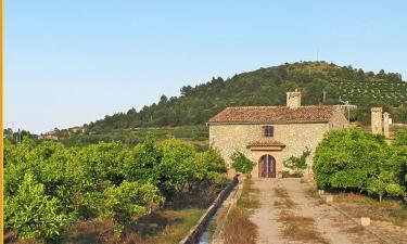 Casa Rural San Miguel Merlich en Ador (Valencia)