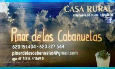 Pinar de las Cabañuelas en Villanueva de Duero a 41Km. de Renedo de Esgueva