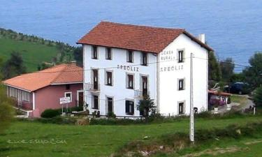 Casa Rural Arboliz en Ibarranguelua a 5Km. de Ea