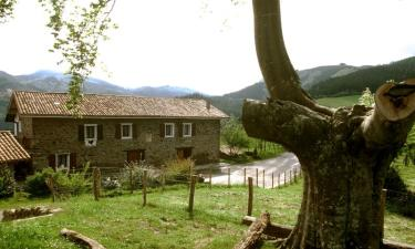 Casa Rural Makaztui en Dima (Vizcaya)