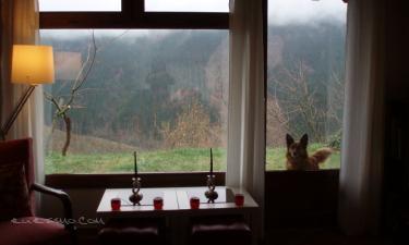 Patxikorenetxea Alojamiento Rural en Orozko a 8Km. de Berganza