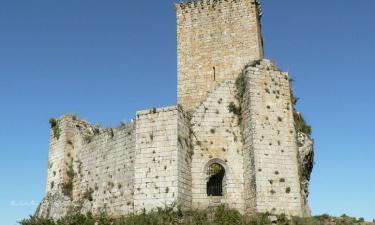 Castillo de Nogueirosa