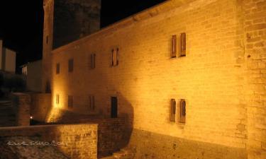 Palacio-Castillo del Príncipe de Viana