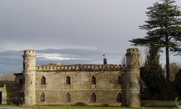 Priorato de Santa María de Duero