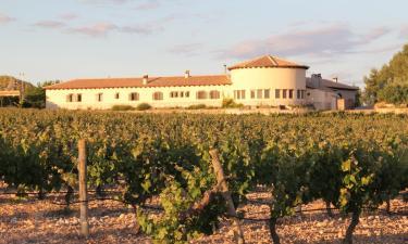 Hotel Enoturismo Mainetes en Fuente-Álamo (Albacete)