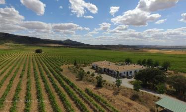 Hotel Rural Finca El Romeral en Alpera (Albacete)