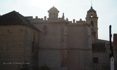 Alojamiento turistico rural el Rincon en Montemayor (Córdoba)