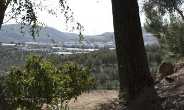 Turismo Rural Ana Reverte en Los Corrales (Sevilla)