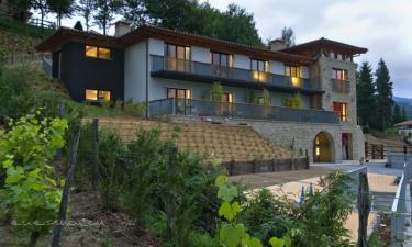 Ellauri Hotela en Zeanuri a 6Km. de Dima