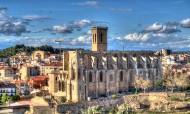 Colegiata-Basílica de Santa María o de la Seo