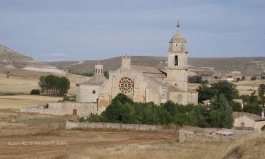 Colegiata de Santa María del Manzano.