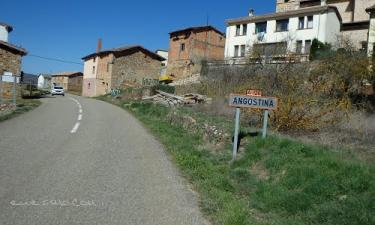 Angostina