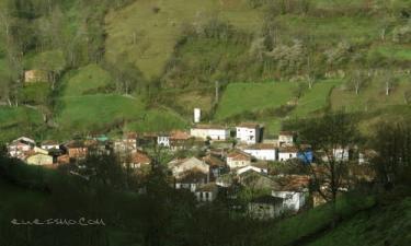 Casomera: