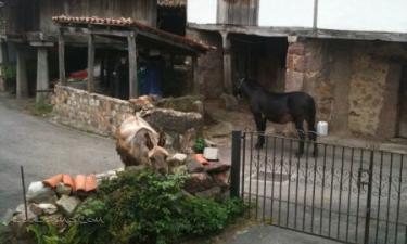 Villar de Vildas: