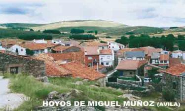 Hoyos de Miguel Muñoz