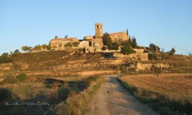 Castelldral: