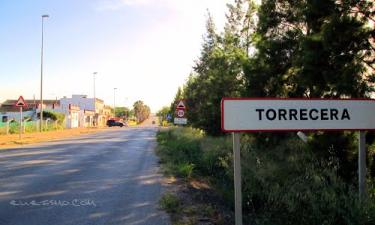 Torrecera