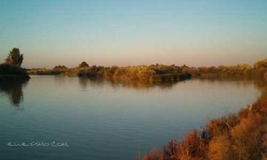 Palma del Río:  Desembocadura del Genil en el Guadalquivir