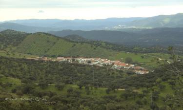 Piconcillo