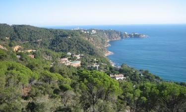 Punta Brava: