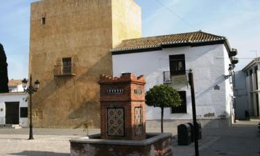 Arroyo-Pinares: