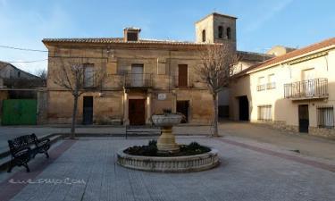 Torrebeleña: