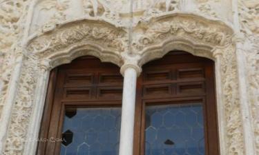 Cogolludo:  Palacio de los Duques de Medinaceli: Me parece lamentable el estado en que se encuentran estas ventanas.