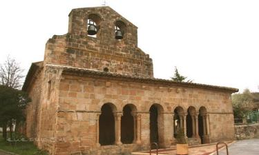 Saúca