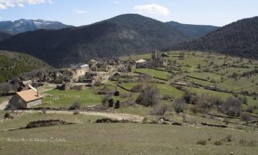 Cortilla