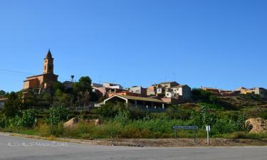 Santa Lecina: