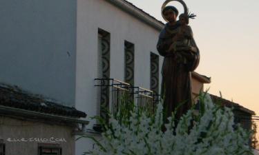 Navas de Tolosa:
